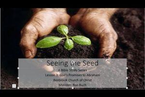 Seeing the Seed, Lesson 3: God's Promises to Abraham